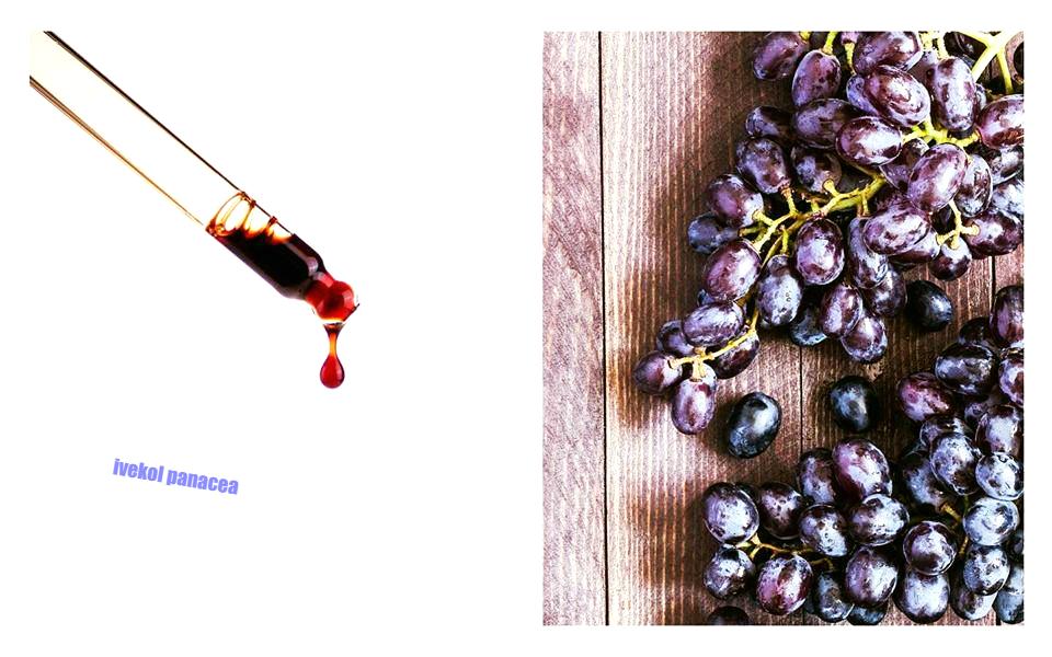 Najsilnejší antioxidant na svete-extrakt z hroznových jadierok -  IveKol